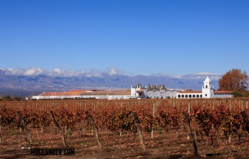 Cafayete winery in Salta, Argentina