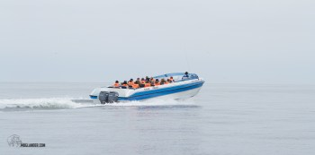 boat to Ballestas Islands
