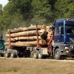 După o lună de la lansare, SUMAL-ul a reuşit performanţa de a urmări tot ce se transportă în România în domeniu
