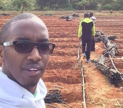 small-scale African farmers with venture capitalists