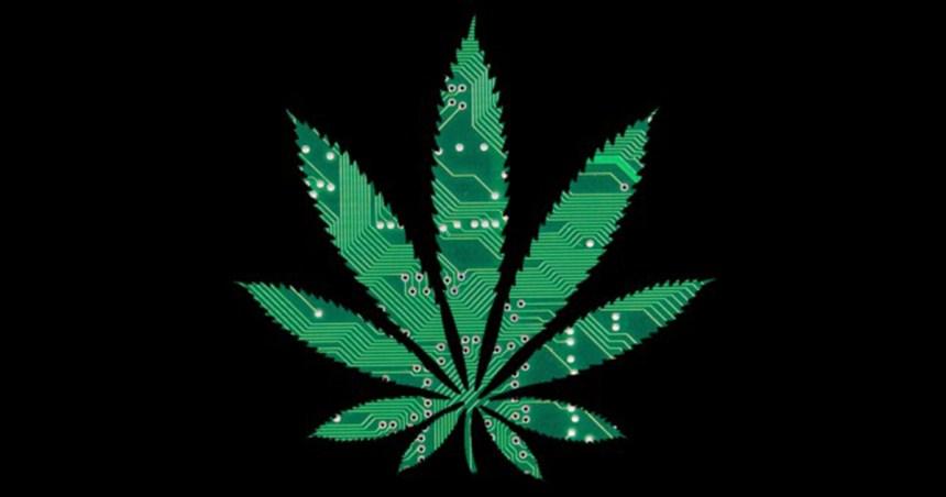 Cannabis entrepreneurs of color
