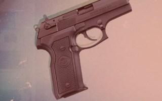 African American Gun Association