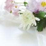 敬老の日 菊の花 縁起悪い 花 人気