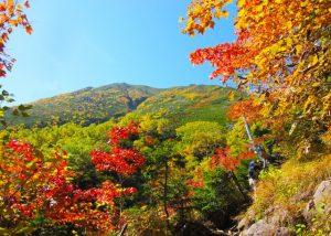 日光 塩原 観光 紅葉 おすすめルート 歩き