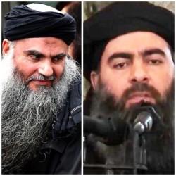 تغريدات د محمد السعيدي داعش والقاعدة ونظرية حصان طروادة