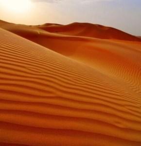 الدولة السعودية والحضارة الغربية حديث في البواكير