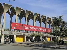 المصريون من خلال معرض القاهرة للكتاب