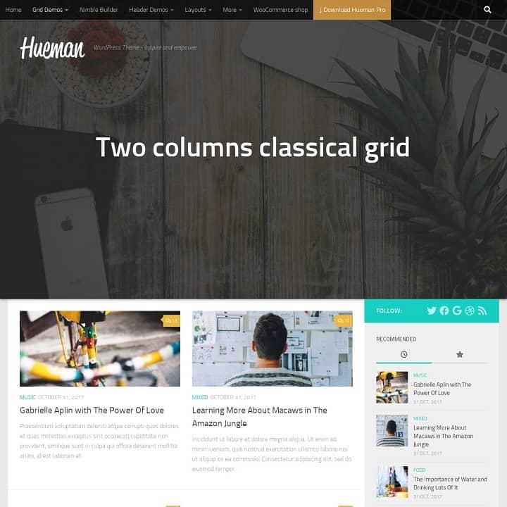 Hueman Theme Review Best WordPress Theme post view