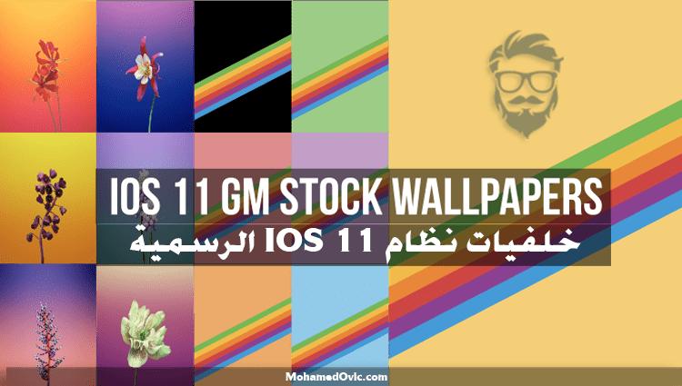 تحميل خلفيات iPad's IOS 11 الرسمية (16 خلفية) بدقة Quad HD