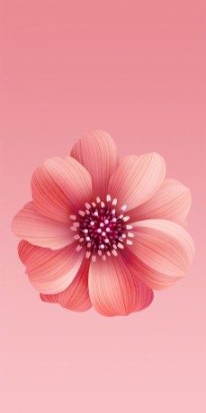 Xiaomi-Mi-A2-and-Mi-6X-Stock-Wallpapers-Mohamedovic (5)