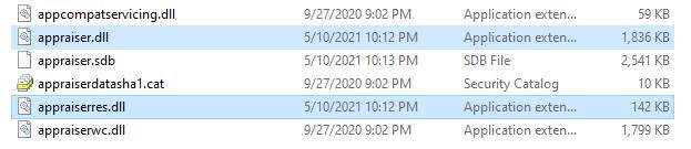 Copy appraiser.dll file