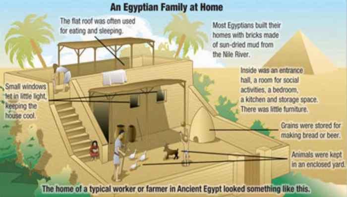 بيت مصري صورة ١