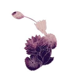 dessin crayonné croquis fleur violet aquarelle aquarelle pastels tendances nuancier inspiration pantone