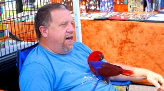 Northeast Avian Rescue, Inc.