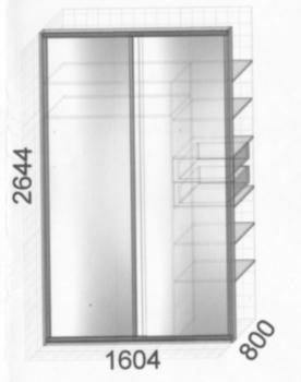 шкаф-купе раздвижные двери с зеркалами