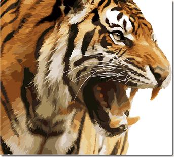 rugissement tigre