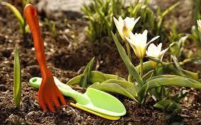 Ранняя весна: как работать на даче
