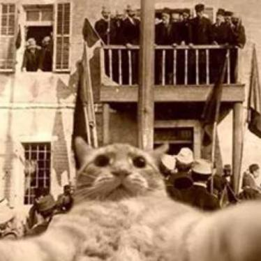 Kocie selfie z Ismailem i kolegami. (znalezione w tajnym bukrze Envera)