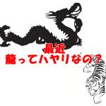 【記事シェア】龍のエネルギーを使う 坪内薫さんと交換しました