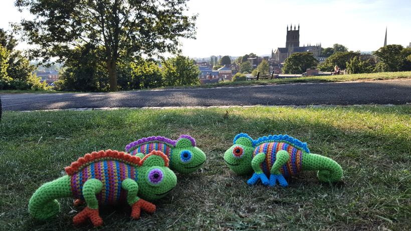 chameleons-in-the-park
