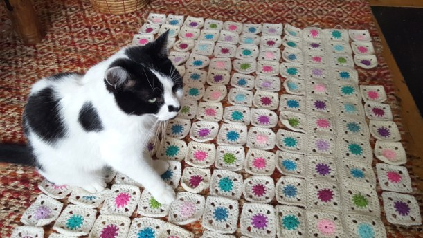 mini-blanket