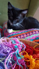Roo-and-the-Crochet