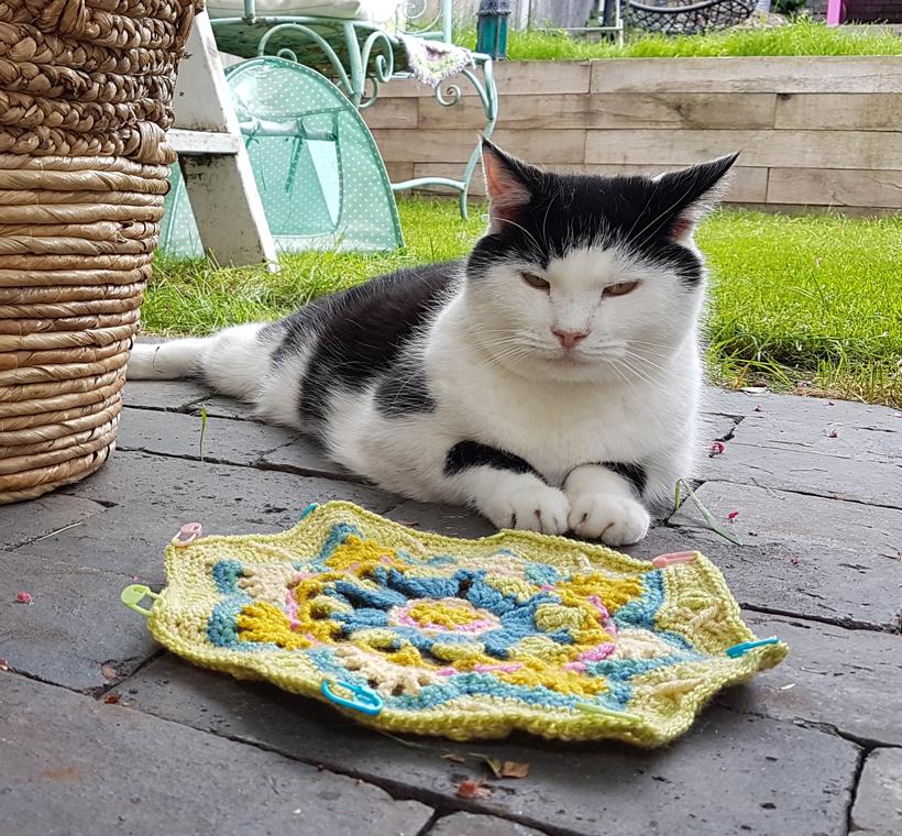 pogo-guards-the-crochet