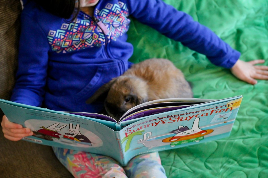 bunnies-can-read-books-too