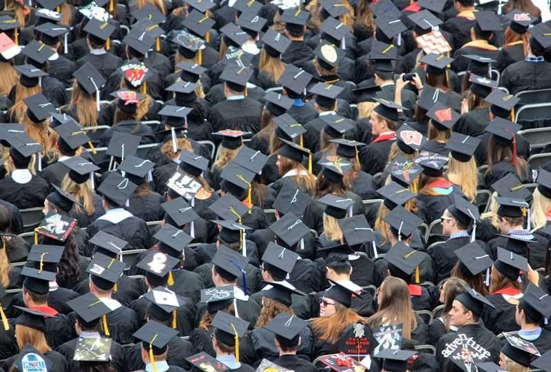 lulus kuliah lalu jadi pengangguran