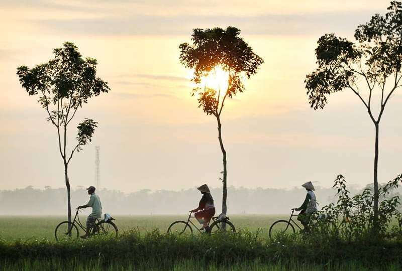 kehidupan di desa