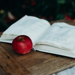 dongeng klasik minta baca membaca buku mojok.co