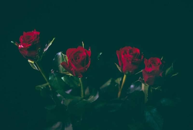 Romantisme Mas Pur dan Mbak Rinjani Ketika Jakarta Memberlakukan PSBB