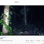 setan sableng tv takut hantu channel youtube hantu misteri mojok
