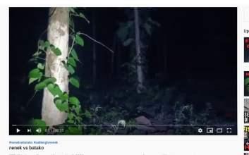 setan sableng tv takut hantu channel youtube hantu misteri mojok