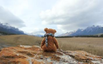 Menerka Perasaan Teddy, Boneka Kesayangan Mr. Bean Lewat Caranya Diperlakukan
