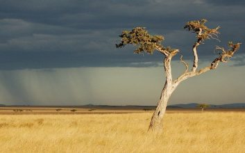 savanna dugem lombok mojok