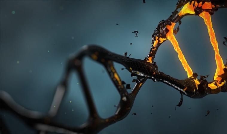 Tes DNA yang Ditukar