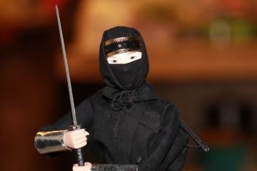 Pers Indonesia menuju Era Ninja