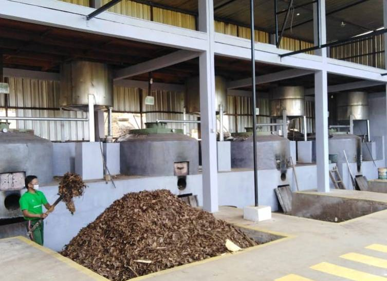 Pabrik pengolahan essential oil dan minyak atsiri milik Khafidz