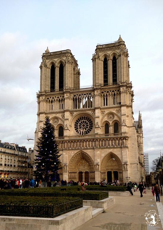 Mój Punkt Widzenia Blog - Katedra Notre Dame w Paryżu, Francja