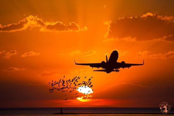 Mój Punkt Widzenia Blog - tanie bilety lotnicze czyli jak tanio latać i nie przepłacać za bilety lotnicze