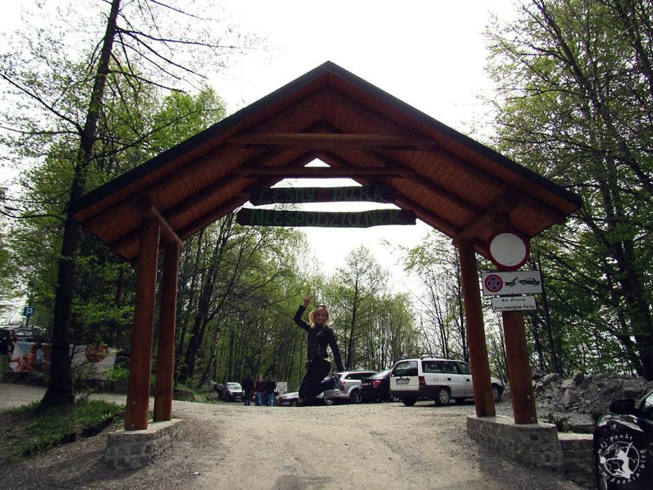 Mój Punkt Widzenia Blog - co trzeba zobaczyć w Parku Leśnych Niespodzianek, atrakcje i skok w Ustroniu