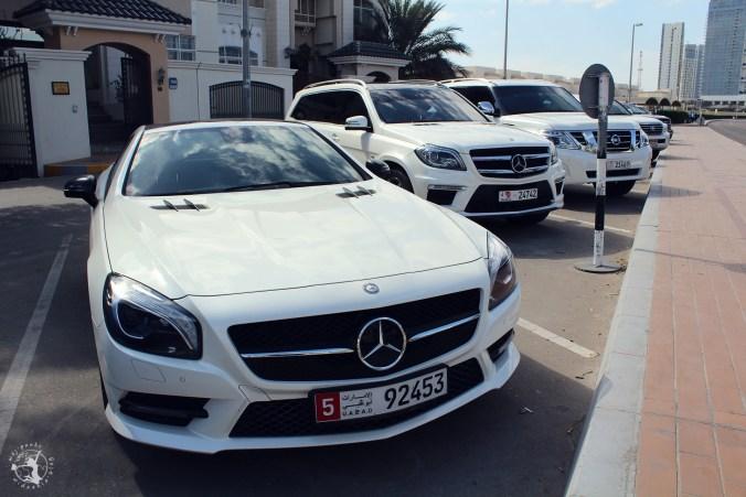 Mój Punkt Widzenia Blog - Meczet Sheikha Zayeda, Abu Dhabi