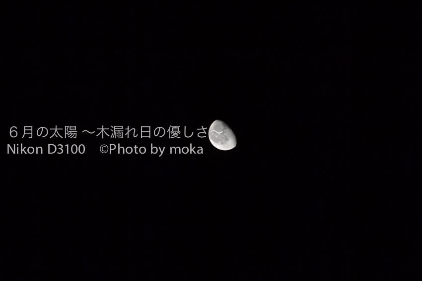 20100929_jitaku04