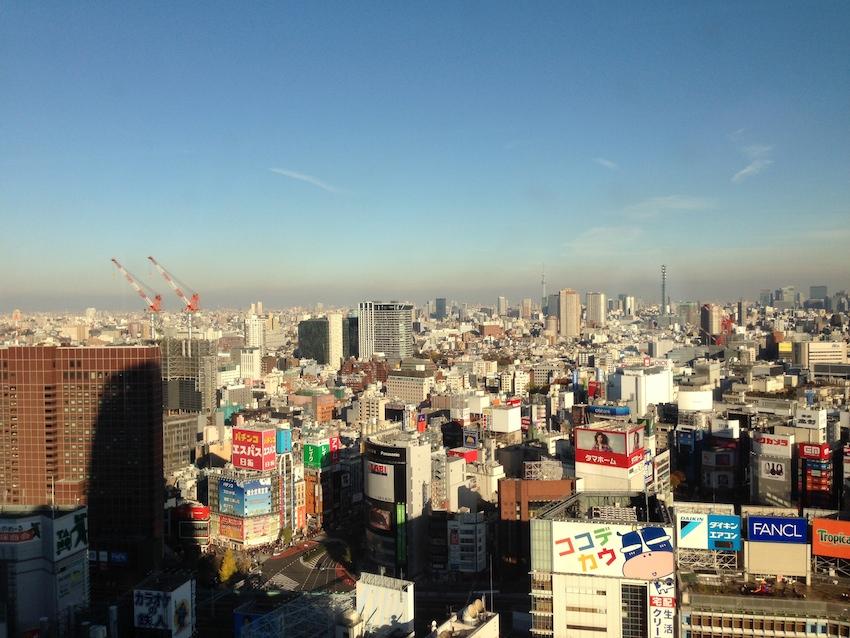 [6]ニコンプラザ新宿から望む東京の街