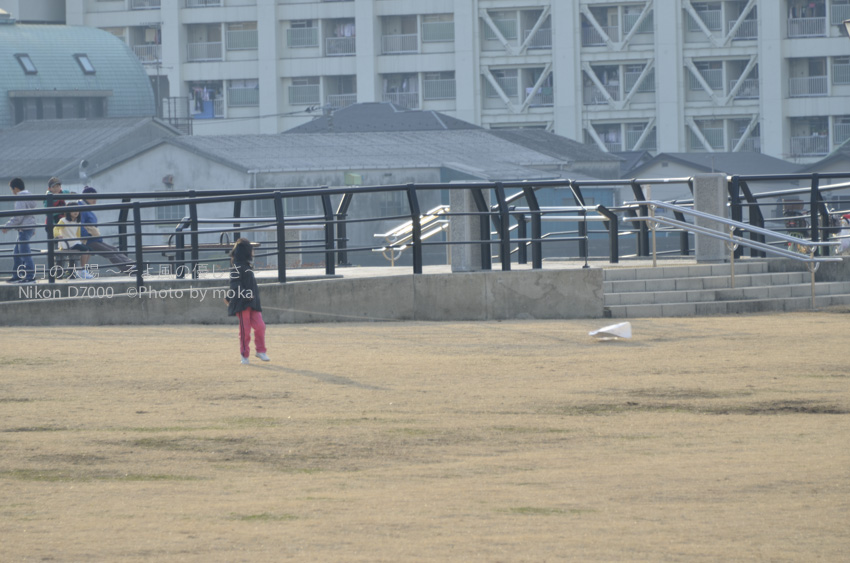 20140112_taiyo29