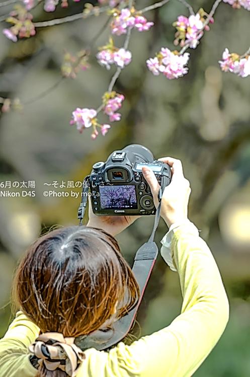 20160213_shinjukugyoen52_2
