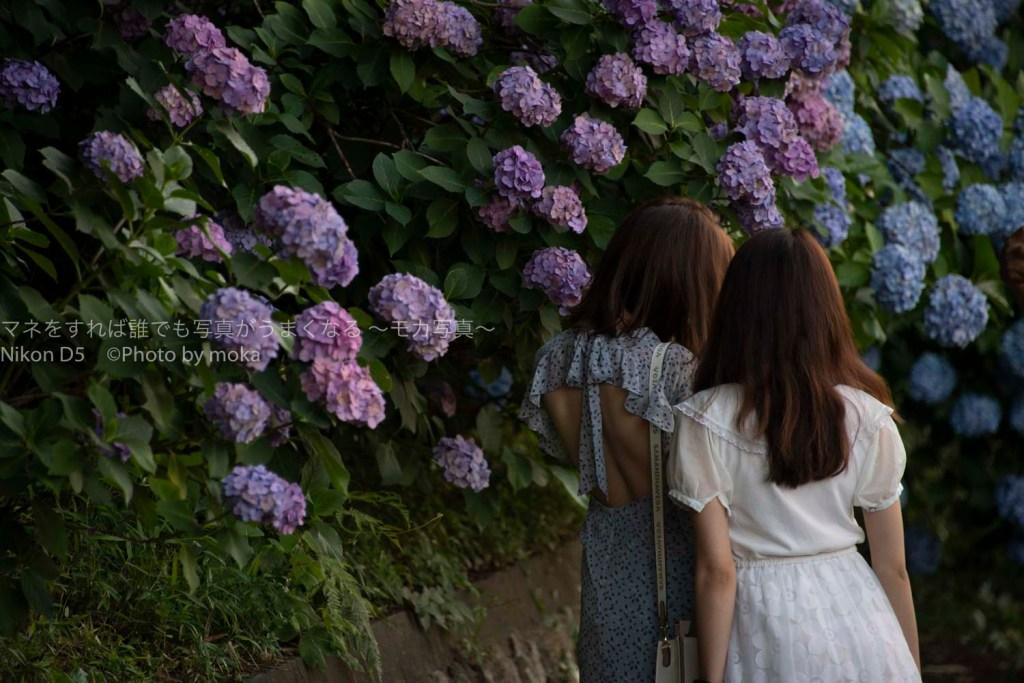 [6]アジサイの花と記念写真!!