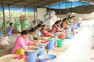 Himalayalar Kahvesi - Ayrıştırma İşlemi