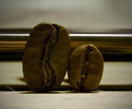 Kahve Paketi - Kahve Tipleri - Maragogype